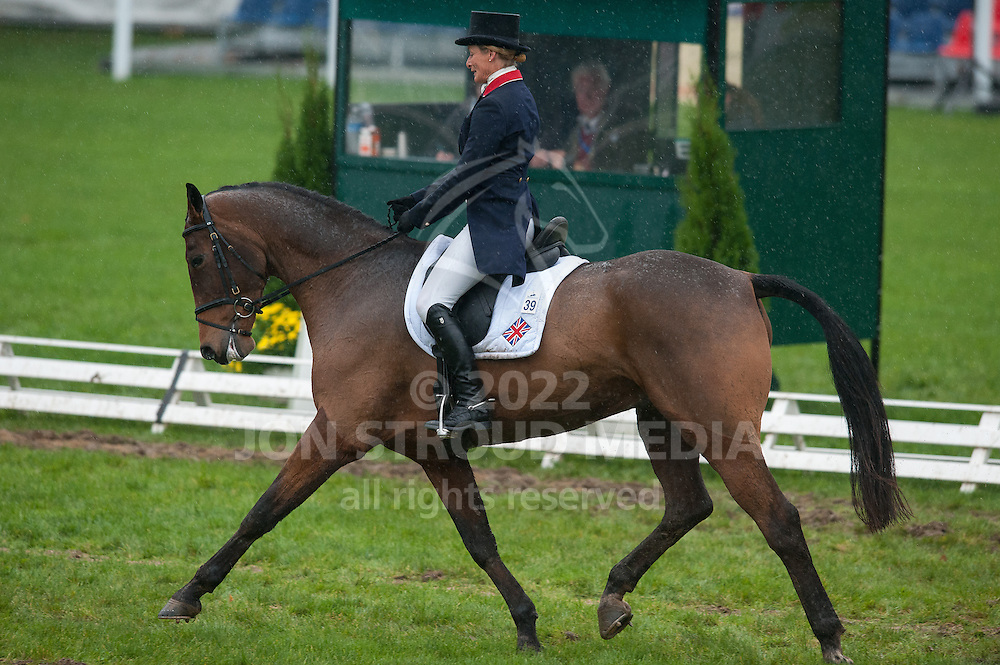 Mary King (GBR) & Cavalier Venture - Dressage - 6 Year Old Horses - Mondial du Lion - FEI World Championship for Young Horses - Le Lion d'Angers, France - 18 October 2012