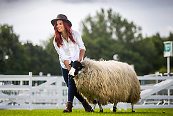 © Licensed to London News Pictures. 08/07/2019. Harrogate UK. Hannah Jackson known as the Red Shepherdess with a Rough Fell sheep, Hannah will be at the Great Yorkshire Show talking to children about a career in farming. The 161st Great Yorkshire show starts tomorrow in Harrogate.. Photo credit: Andrew McCaren/LNP