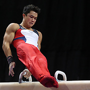 Sean Melton, U.S.O.T.C. in action on the Pommel horse during the Senior Men Competition at The 2013 P&G Gymnastics Championships, USA Gymnastics' National Championships at the XL, Centre, Hartford, Connecticut, USA. 16th August 2013. Photo Tim Clayton