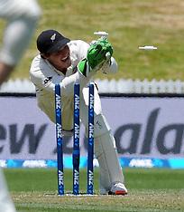 Hamilton-Cricket, New Zealand v Sri Lanka, 2nd test, day 1