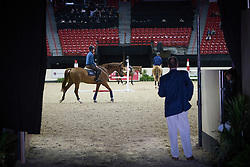 Lindelow Douglas, (SWE), Casello <br /> Morning training session<br /> Longines FEI World Cup™ Jumping Final<br /> Las Vegas 2015<br />  © Hippo Foto - Dirk Caremans<br /> 16/04/15