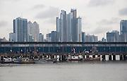 Nuevo Mercado de Mariscos, Panamá City. ©Victoria Murillo/Istmophoto.com