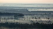 Trees and fog aerial in St. Tammany Parish near Abita Springs, Louisiana
