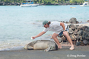 Hawaii HWNM Sanctuary coordinator Justin Viezbicke uses hair coloring solution to bleach an identification number into the fur of a Hawaiian monk seal, Monachus schauinslandi ( Critically Endangered, endemic species ), 3 year old male, Keauhou Bay, Kona, Hawaii ( Big Island )