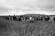 Wheatfield day at the University College farm, Lyons Estate, Celbridge, Co Kildare. Politicians, members of agricultural organizations, the grain trade and the flour industry inspect the wheat trials being carried out to test replacement wheat varieties and the impact of new fertilizers. 27.07.1967
