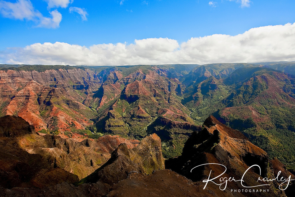 Waimea Canyon - Koke'e State Park - Kalalau Lookout.