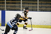 SAT 0830 GROSSE POINTE BULLDOGS V MACOMB MAVERICKS