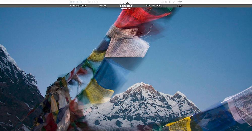Patagonia: Website (2015)