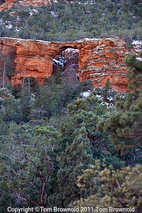 Natural bridge in the Supai layer of the Mogollon rim , Sedona Arizona.The forest here is Arizona Cypress and Douglas fir with Oak trees, manzanita, Pinon Pine and an occasional Ponderosa Pine in the forest.