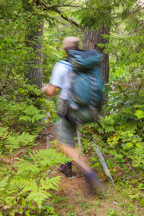 A man hikes the International Appalachian Trail east of Baxter State Park in Maine's northern forest. Near Grand Pitch on the East Branch of the Penobscot River.