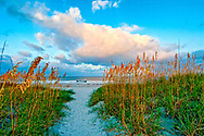 Florida, Fernandina Beach, Fort Clinch State, Park Sea Grass, Path