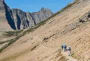 "Hikers approach Piegan Pass in the Lewis Range in Glacier National Park, Montana, USA. A scenic walking traverse starts from Siyeh Bend over Piegan Pass to Many Glacier, visiting glorious mountains, valleys and lakes over 13 miles (2260 feet up, 3520 feet down). Since 1932, Canada and USA have shared Waterton-Glacier International Peace Park, which UNESCO declared a World Heritage Site (1995) containing two Biosphere Reserves (1976). Rocks in the park are primarily sedimentary layers deposited in shallow seas over 1.6 billion to 800 million years ago. During the tectonic formation of the Rocky Mountains 170 million years ago, the Lewis Overthrust displaced these old rocks over newer Cretaceous age rocks. Glaciers carved spectacular U-shaped valleys and pyramidal peaks as recently as the Last Glacial Maximum (the last ""Ice Age"" 25,000 to 13,000 years ago). Of the 150 glaciers existing in the mid 1800s, only 25 active glaciers remain in the park as of 2010, and all may disappear by 2020, say climate scientists."