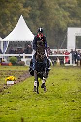 French Piggy, GBR, Cooley Lancer<br /> Mondial du Lion - Le Lion d'Angers 2019<br /> © Hippo Foto - Dirk Caremans<br />  20/10/2019