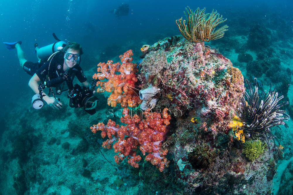 Underwater photographer by soft corals, Mabul, Sabah, Malaysia, Borneo, Celebes Sea,