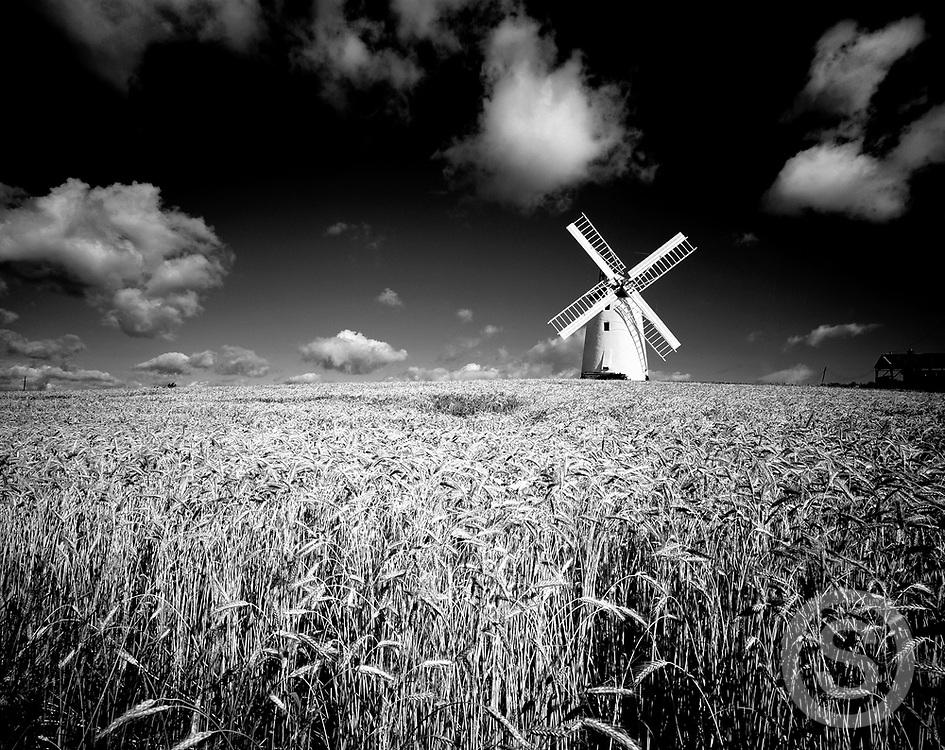 Photographer: Chris Hill, Ballycopeland Windmill, Millisle, County Down