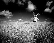 Photographer: Chris Hill, Ballycopeland Windmill, Millisle, County Down