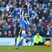 Brighton's Rohan Ince shoots at goal during the Sky Bet Championship match between Brighton and Hove Albion and Birmingham City at the American Express Community Stadium, Brighton and Hove, England on 21 February 2015. Photo by Phil Duncan.