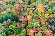 64776-02114 Aerial view of Hugoboom Lake in fall color Alger Co. MI