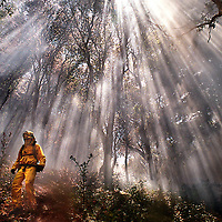 Sunlight streaming through the smoke of a wildland fire creates a dramatic backdrop as a CDF firefighter searches for hot spots.