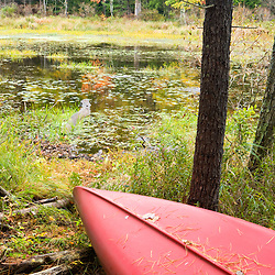A canoe rests next to a small pond near Page Brook and Lake Winnipesauke in Meredith, New Hampshire.