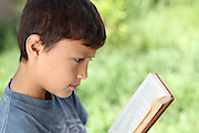 Young boy reading book outside with natural green background and shallow depth of field - with copy space to right