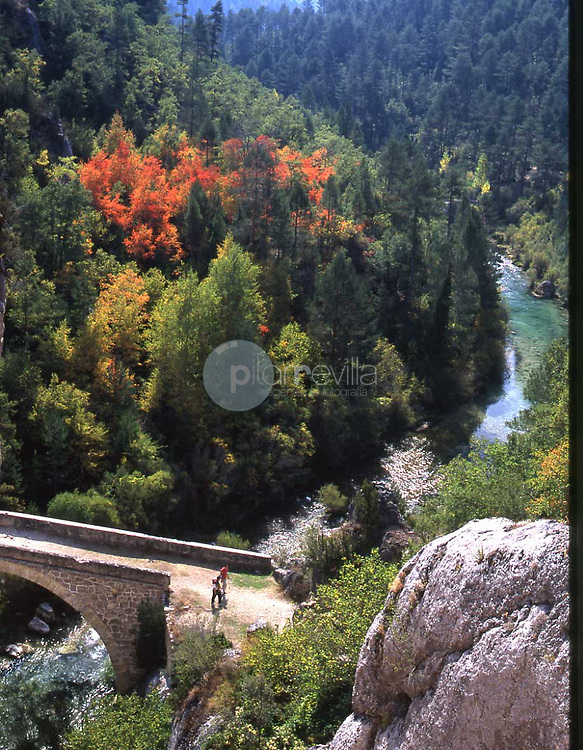 Puente de Peñalen. Parque Natural Alto Tajo. Guadalajara ©Antonio Real Hurtado Antonio Real Hurtado / PILAR REVILLA