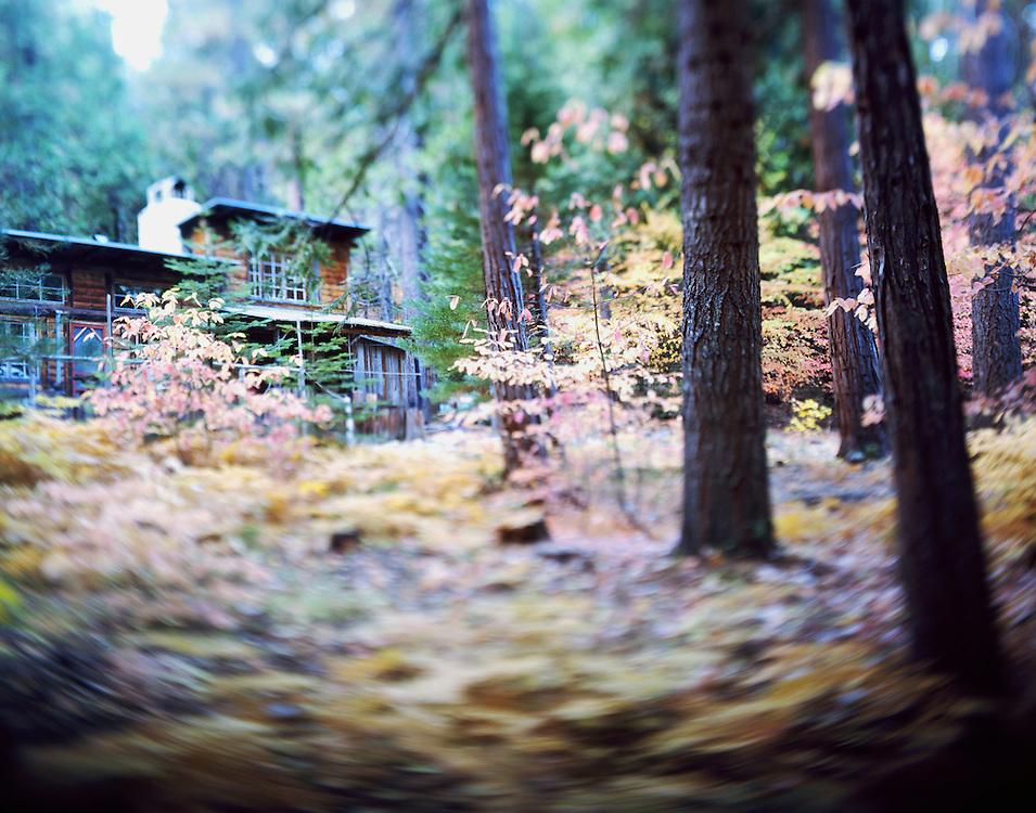 Fall in the Sierra Nevada, Calaveras County