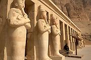 .Guard at Hatshepsut Temple at Deir al-Bahri, Egypt