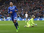Cardiff City v Fulham 250217