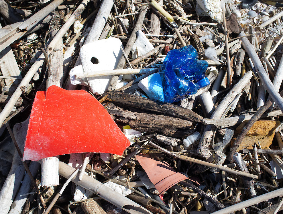 Ocean pollution affects at least 267 species worldwide, including 86% of sea turtle species, 44% of all sea bird species, and 43% of marine mammal species.