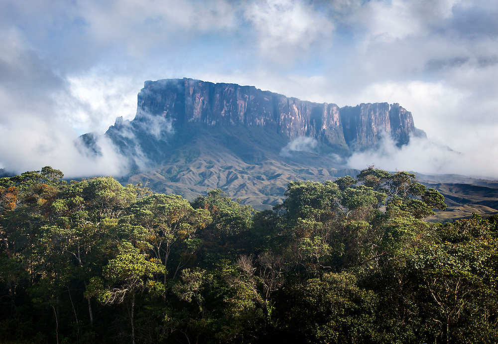 Kukenán-tepui emerges from mist, Canaima National Park, Venezuela.