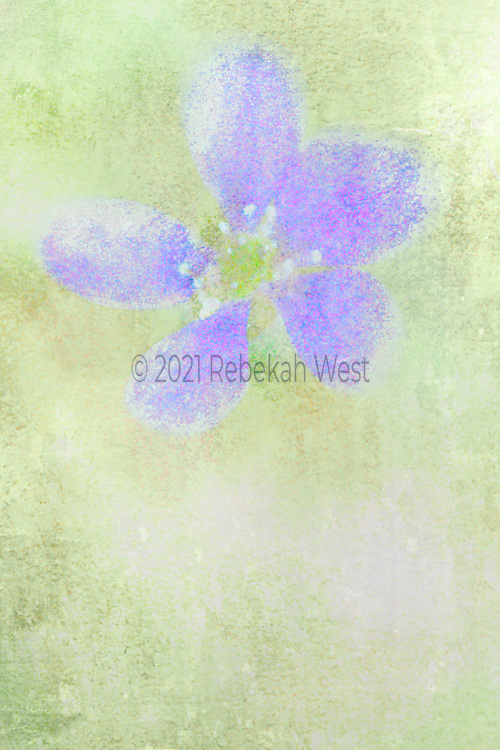 soft whimsical five petaled flower with green center and white stamen polka dots sits up center on upper half of vertical field of soft greens, greenery underlayers and overlayers, greenery, flower art, feminine, high resolution, licensing, iridescent, vertical, 2317 x 3476