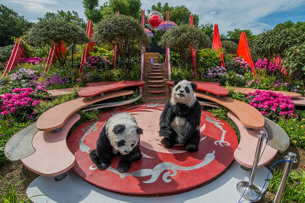 Pandas arrive on The Silk Road, Chengdu Garden - The Chelsea Flower Show organised by the Royal Horticultural Society with M&G as its main sponsor for the final year. London 22 May, 2017