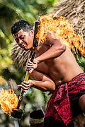 Polynesian Center, Hawaii