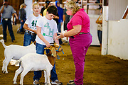 16 JULY 2020 - BOONE, IOWA: KATHY KRAFKA HARKEMA, center, the meat goat judge, talks to contestants JOSE ZAVALA, left, and MADDIE MOWRER, during meat goat judging in the show ring on the first day of the Boone County Fair in Boone. Summer is county fair season in Iowa. Most of Iowa's 99 counties host their county fairs before the Iowa State Fair. In 2020, because of the COVID-19 (Coronavirus) pandemic, many county fairs were cancelled, and most of the other county fairs were scaled back to concentrate on 4H livestock judging. Boone county scaled back its fair this year. The Iowa State Fair was cancelled completely. Boone County Emergency Management did not approve going ahead with the fair, and has advised anyone who goes to the fair to take precautions and monitor themselves for symptoms of the Coronavirus.           PHOTO BY JACK KURTZ