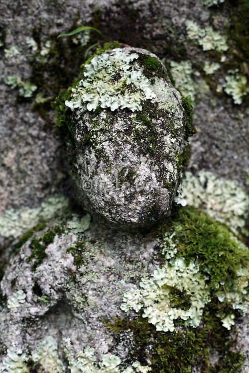 face of a deteriorating stone sculpture Japan