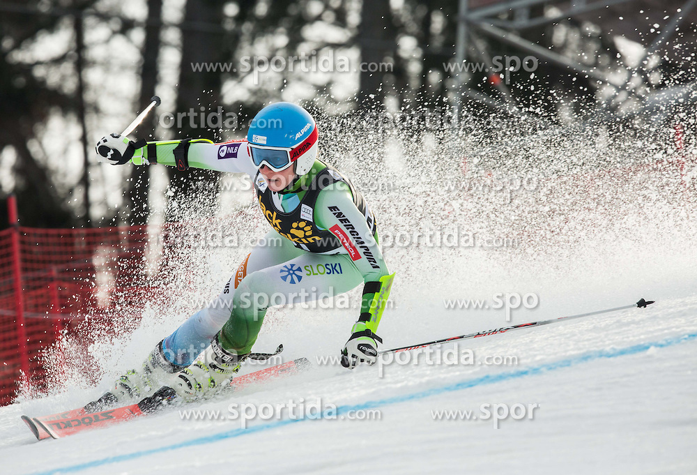 Marusa Ferk (SLO) competes during 7th Ladies' Giant slalom at 52nd Golden Fox - Maribor of Audi FIS Ski World Cup 2015/16, on January 30, 2016 in Pohorje, Maribor, Slovenia. Photo by Vid Ponikvar / Sportida