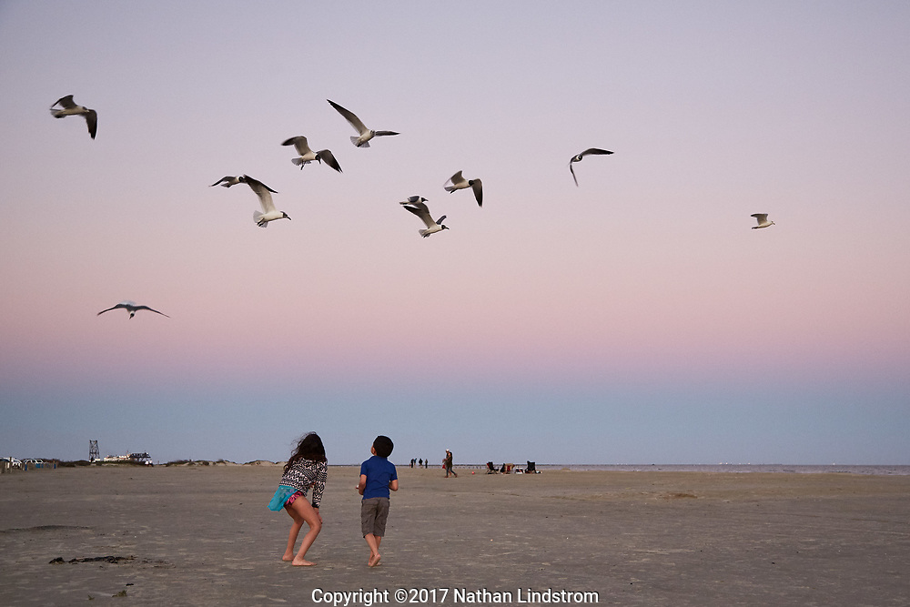 Children play at East Beach on Galveston Island. Photographed Wednesday evening February 22, 2017 for Texas Highways Magazine.<br /> <br /> Nathan Lindstrom for Texas Highways<br /> <br /> &copy;2017 Nathan Lindstrom