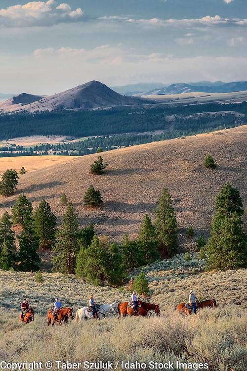 Horseback riding through the Sapphire Mountains in Hamilton, MT