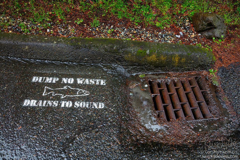 """Runoff from a rainstorm flows past a water-quality warning sign and into a stormwater drain in Shoreline, Washington. The painted sign features a salmon icon and reads, """"Dump no waste. Drains to Sound."""" Sound refers to Puget Sound, a large body of water in Washington state."""