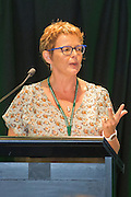 Cynthia Seamark - Nurses experiencing layered suffering, do we care?<br /> <br /> Dilemmas and Ethical Issues in Palliative Care: The Good, The Bad & The Ugly<br /> <br /> Palliative Care Nurses New Zealand 5th Biennial Conference 2015 Wellington<br /> <br /> 9th & 10th November 2015