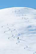 Bild von Skifahrer am Pfaffli, Abfahrt in Simmental<br /> <br /> Lonely skier in a snow oasis