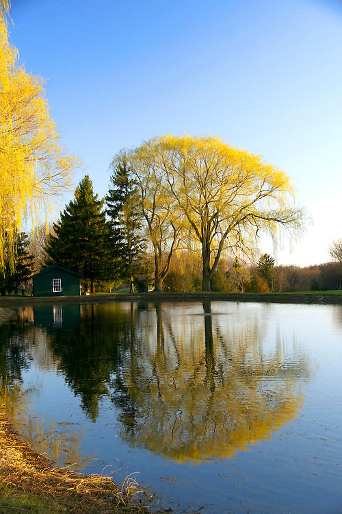 A mirrored water reflection of a pleasant Wisconsin scene.