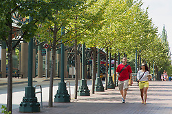 North America, United States, Washington, Bellevue, couple walking on tree-lined promenade