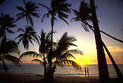 Couple at sunset with palms<br />