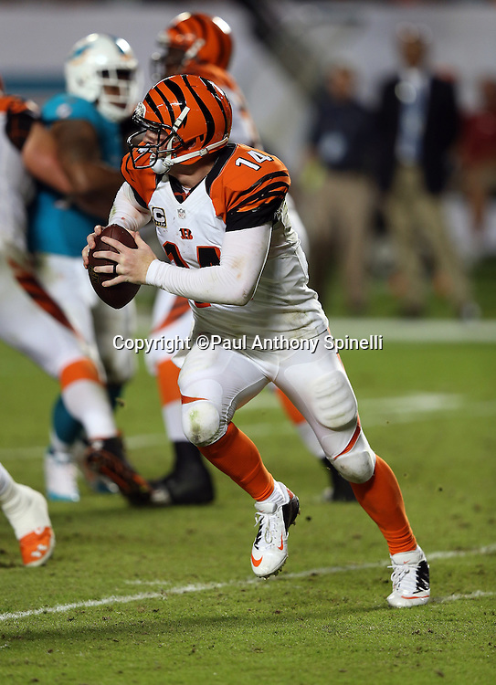 Cincinnati Bengals quarterback Andy Dalton (14) scrambles on a keeper that gives the Bengals a third quarter first down during the NFL week 9 football game against the Miami Dolphins on Thursday, Oct. 31, 2013 in Miami Gardens, Fla.. The Dolphins won the game 22-20 in overtime. ©Paul Anthony Spinelli