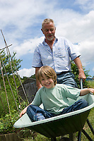 Grandfather pushing boy in wheel barrow