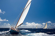Eleonora sailing in the Butterfly Race at the Antigua Classic Yacht Regatta.