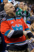 KELOWNA, CANADA - APRIL 26:  Fan after a goal at the Kelowna Rockets game on April 26, 2017 at Prospera Place in Kelowna, British Columbia, Canada.  (Photo By Cindy Rogers/Nyasa Photography,  *** Local Caption ***
