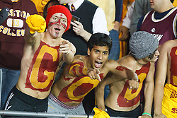 October 2, 2010; Chestnut Hill, MA, USA;  Boston College Eagles fans celebrate in the stands during the first quarter against the Notre Dame Fighting Irish at the Alumni Stadium.